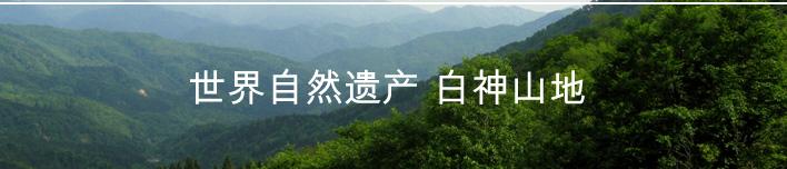 世界自然遗产 白神山地